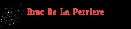 Brac De La Perriere